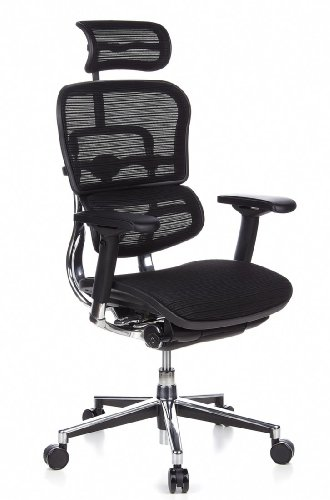 hjh OFFICE 652111 Bürostuhl Chefsessel ERGOHUMAN-Chefsessel-Test